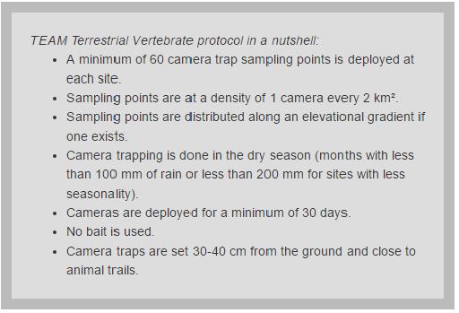 camera traps, camera trapping protocol