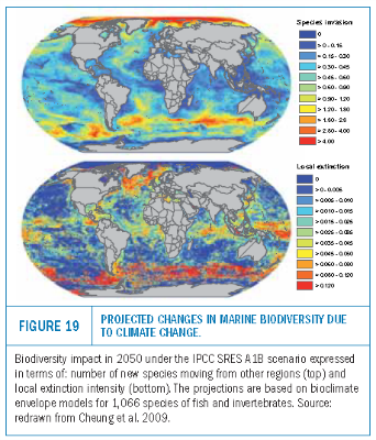 climate change impacts on marine biodiversity