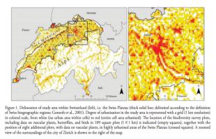 impacts of urbanisation, negative effects of urbanization